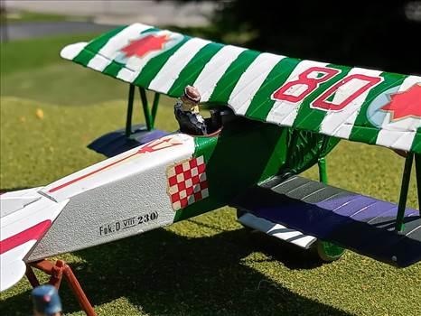 Notional Moldovan Air Force, Fokker D.VII by ScottUehl