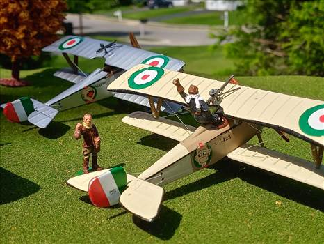 Italian, Nieuport 11, 80 Squadraglia, Sergente Alvaro Leonardi, Renwal by ScottUehl