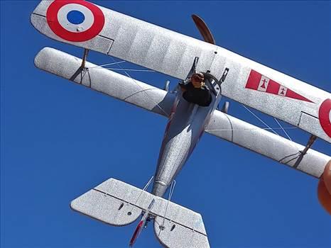 1/72 scale, Roden, Nieuport 24bis, SPA 97,  by ScottUehl