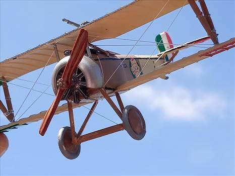 Nieuport 11, 80 Squadraglia, Sergente Alvaro Leonardi,  by ScottUehl