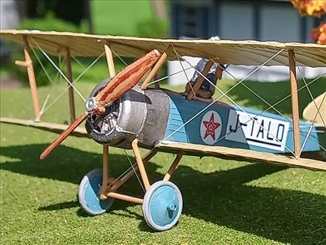 Japanese Sopwith Pup (Loire et Olivier built).  J-TALO, unknown owner, mid 1920s , by ScottUehl