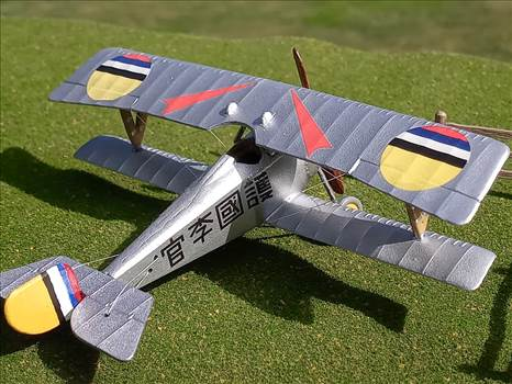 Nieuport 17, Manchukuo, Puppet State, Japan, Manchuria, Flying Corps,  by ScottUehl