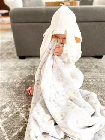 Baby Minky Blanket.jpeg by BabyWantDesigns