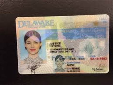 IDMasters has been the nets premier provider of Fake IDs and Novelty IDs for almost 6 years. Our prices and industry leading customer service have made IDMasters the supplier of choice when it comes to Fake IDs, Novelty IDs and related products.
