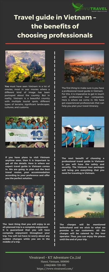 Travel guide in Vietnam – the benefits of choosing professionals.jpg by vivutravel