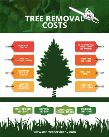 Tree cutting service by Treeservicenearme