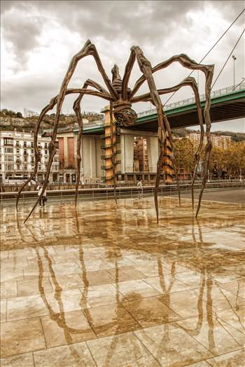 arachnid reflections.jpg by WPC-208