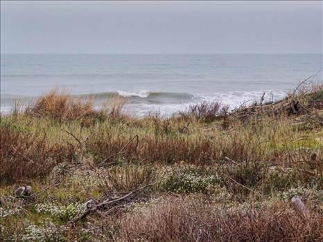 Soulec sur Mor shore.jpg by WPC-208