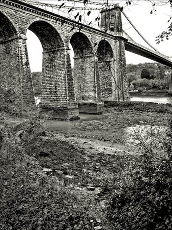 suspension bridge.jpg by WPC-208