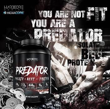 predator1.jpg by peter