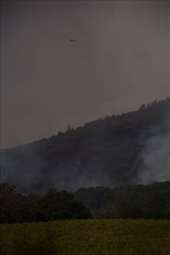 SonomaFire16.jpg by North Bay Wildfire Relief