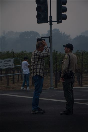 SonomaFire8.jpg by North Bay Wildfire Relief