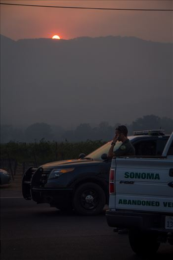 SonomaFire5.jpg by North Bay Wildfire Relief
