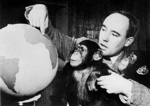 1958_ZooTime_DesmondMorris.jpg -