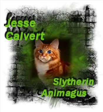 JesseAnimagus.jpg by Charbonne