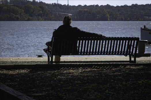 I sit Alone by Patricia Zyzyk