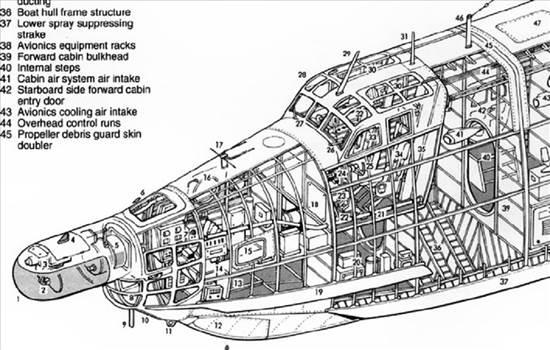 berievbe12_cutaway - Copy.jpg by RichardG