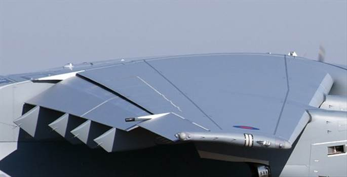wing.jpg by RichardG