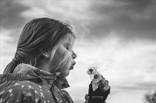 Fly, fly away! by Agata W. Kwasniewska Photography