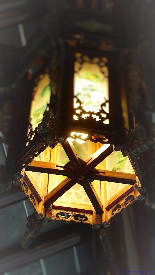 Chinese Lantern  by Lewis & Co. Photography