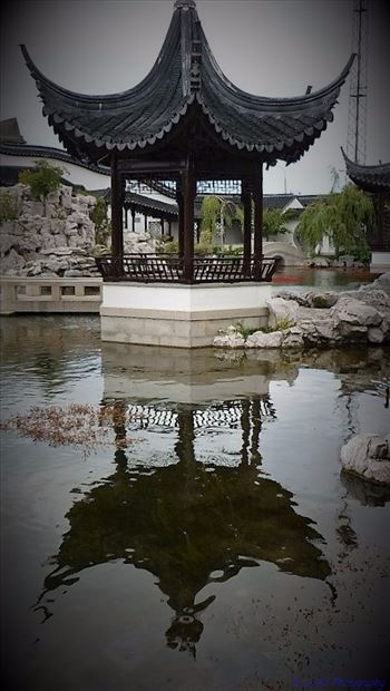 Chinese Gardens by Lewis & Co. Photography