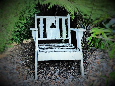 Little chair by Lewis & Co. Photography