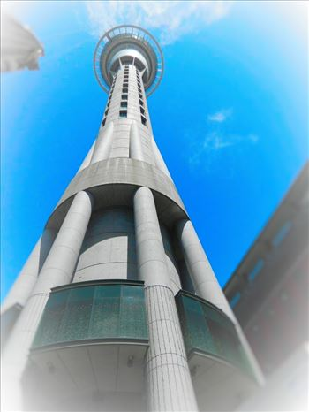 Sky Tower by Lewis & Co. Photography