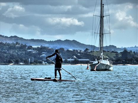 Paddleboarder -