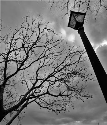 Old Lamp post -