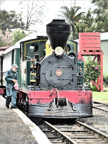 Train at Kawakawa -