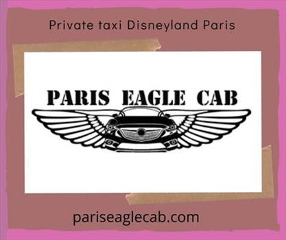 Private taxi Disneyland Paris.gif by Pariseaglecab