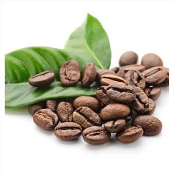decaffeinated-bolivian-usda-organic-shade-grown-coffee-1-4-lb-bag1-450x450.jpg by theorganicbeans