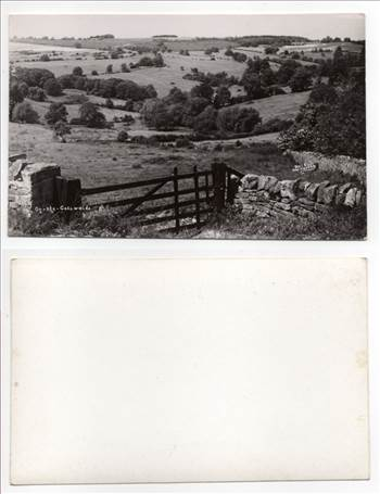 On The Cotswolds PW266.jpg by whitetaylor