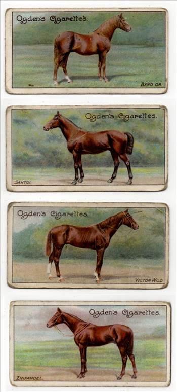 Ogden Racehorses Front CC0028.jpg by whitetaylor