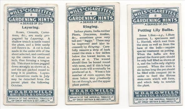 Wills Gardening Hints Back CC0271.jpg by whitetaylor