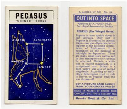 Brooke Bond Out Into Space #42 Pegasus The Winged Horse CC0257.jpg by whitetaylor
