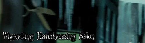 Wizarding hairdressing salon.jpg  by CraftyQueen