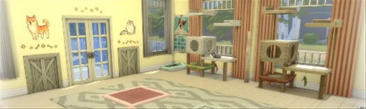 pet room.jpg by CraftyQueen