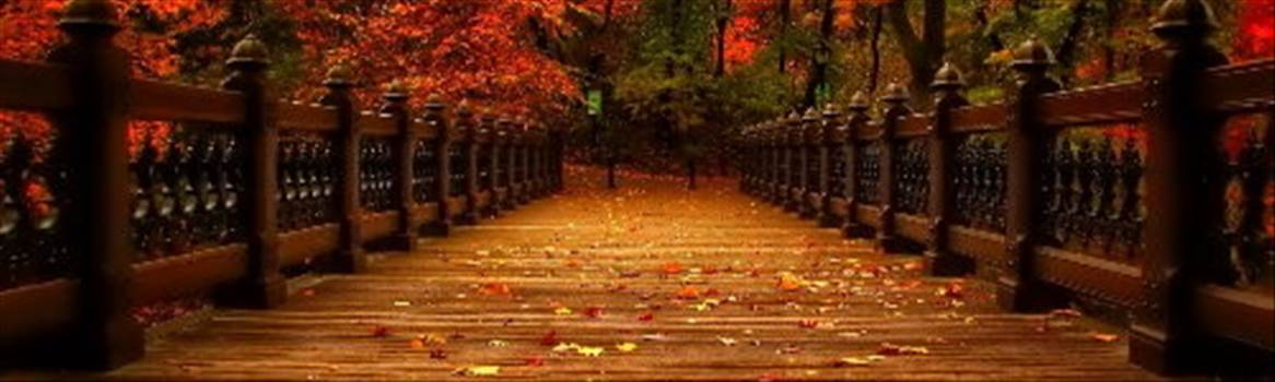 walking bridge.jpg by CraftyQueen