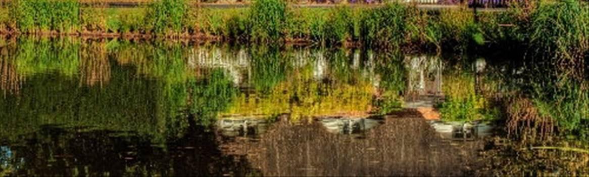 hermione jayden pond.jpg by CraftyQueen