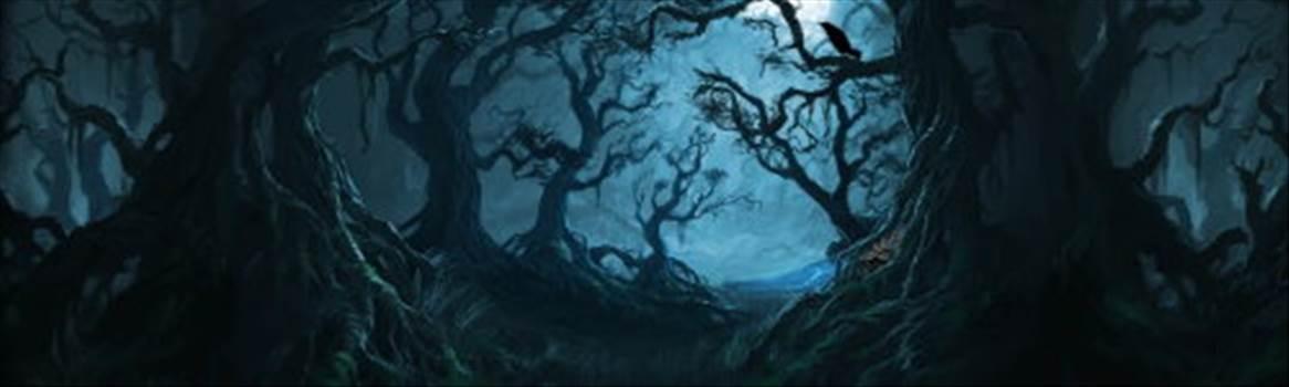 forbidden forest.jpg by CraftyQueen
