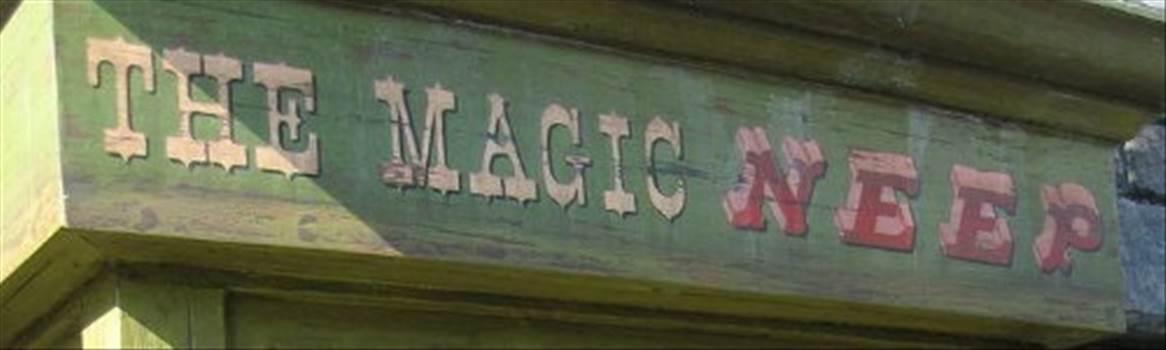 THE MAGIC NEEP.jpg -