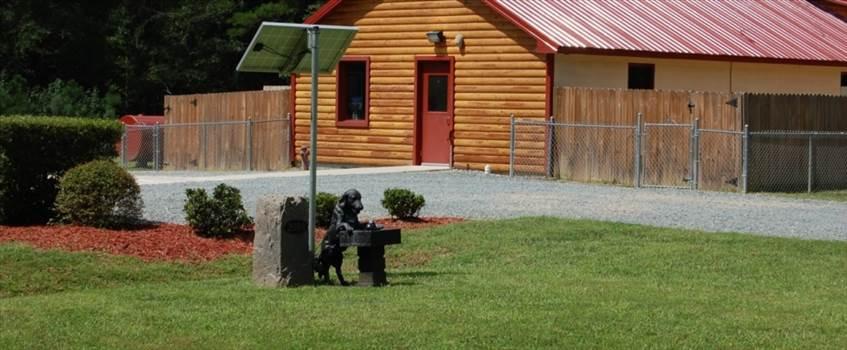 Chapel Hill Pet Boarding by countrykennel