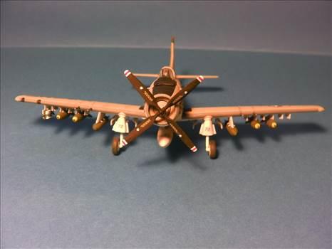 Skyraider 33.JPG by neil5208
