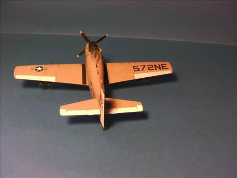 Skyraider 27.JPG by neil5208