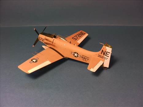 Skyraider 26.JPG by neil5208