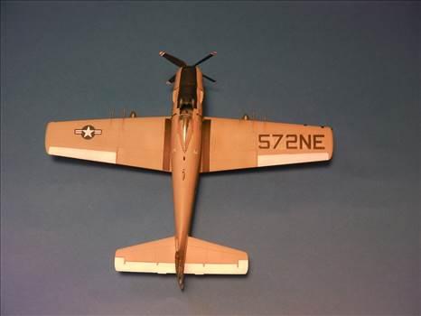 Skyraider 37.JPG by neil5208