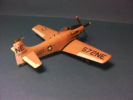 Skyraider 28.JPG by neil5208