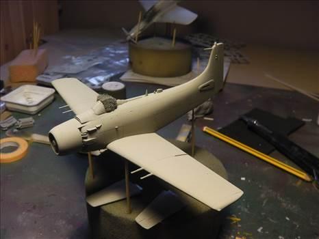 Skyraider 22.JPG by neil5208