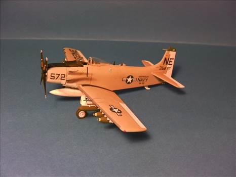 Skyraider 25.JPG by neil5208